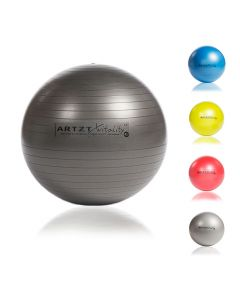 Vitality Fitness-Ball Professional